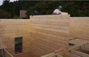 structure studio de jardin en madrier empilé