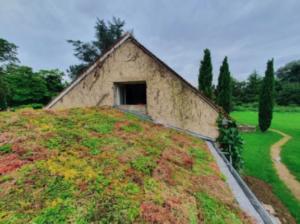 toit vegetalise extension de maison